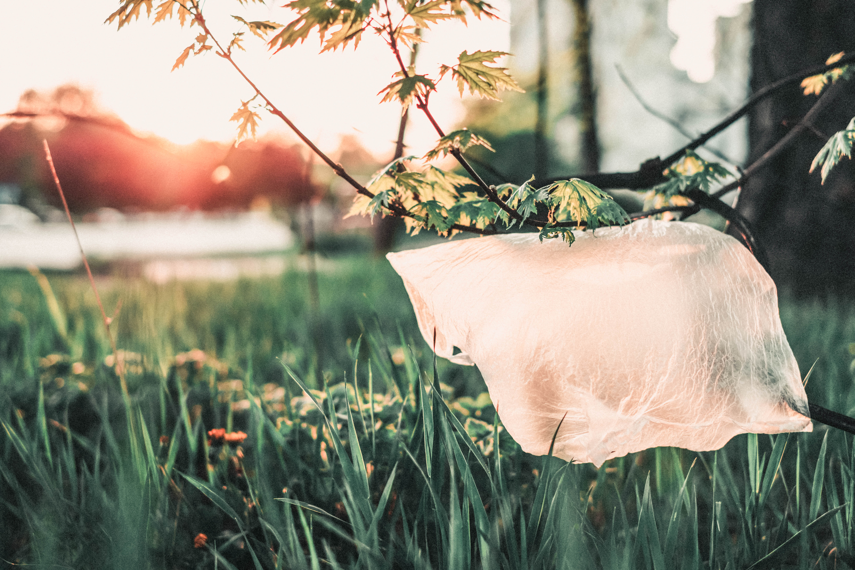 consumare meno plastica